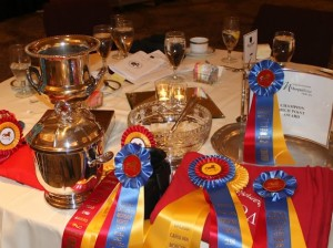 VCMHC Awards await their latest recipients at our annual banquet